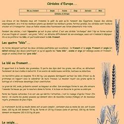 blé, maïs, seigle, épeautre, sarrasin, froment, méteil, orge, avoine, riz, céréales, blé noir