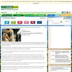 PLEINCHAMP 27/01/14 Epidémie de grippe aviaire H5N8 en Corée du Sud