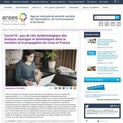 ANSES 19/11/20 Covid-19 : pas de rôle épidémiologique des animaux sauvages et domestiques dans le maintien et la propagation du virus en France