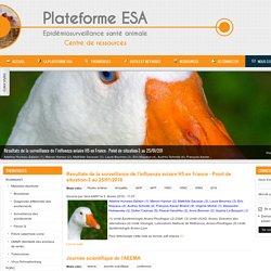 PLATEFORME ESA 11/07/14 Bilan de la journée Résavip 2014