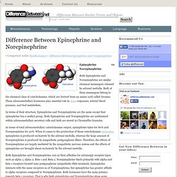 Difference Between Epinephrine and Norepinephrine | Difference Between | Epinephrine vs Norepinephrine