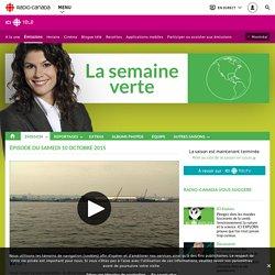 La santé du fleuve St-Laurent