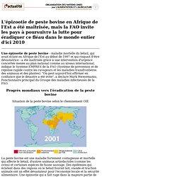 1997 - L'épizootie de peste bovine en Afrique de l'Est a été maîtrisée, mais la FAO invite les pays à poursuivre la lutte