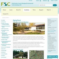 Epping Forest - FSC Epping Forest