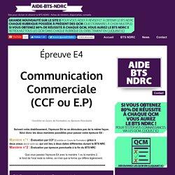 Épreuve E4 - aide-bts-nrc.overblog.com