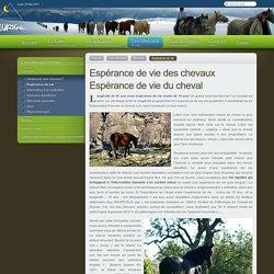 EquiLibre - Espérance de vie des chevaux