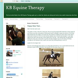 KB Equine Therapy: Happy New Year...