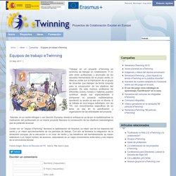Equipos de trabajo eTwinning