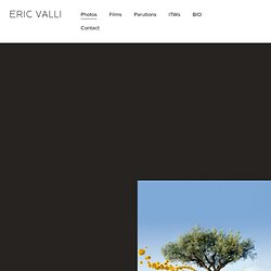 Honey Hunters : Eric Valli