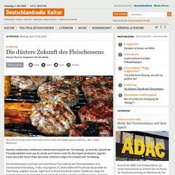 Ernährung - Die düstere Zukunft des Fleischessens