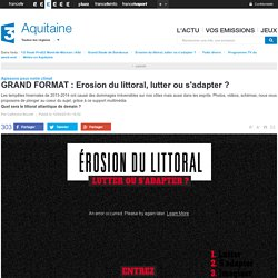 GRAND FORMAT : Erosion du littoral, lutter ou s'adapter ? - France 3 Aquitaine