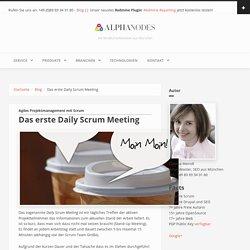 Das erste Daily Scrum Meeting
