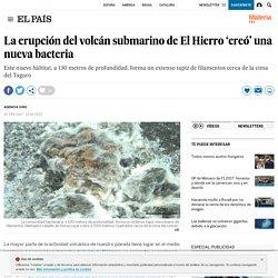 La erupción del volcán submarino de El Hierro 'creó' una nueva bacteria