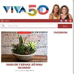 Vaso de 7 ervas: Xô mau olhado! - Viva 50 por Maria Celia e Virginia Pinheiro