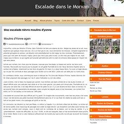 Tag bloc escalade nièvre moulins d'yonne - Escalade dans le Morvan