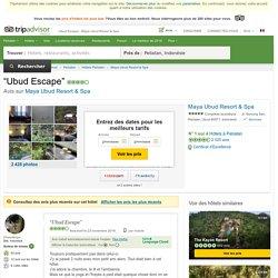 Ubud Escape - Avis de voyageurs sur Maya Ubud Resort & Spa, Peliatan