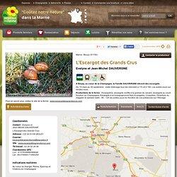 Marne : L'Escargot des Grands Crus - Contact & Plan d'accès - bouzy, Marne (51
