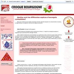 Escargots de Bourgogne Croque Bourgogne -