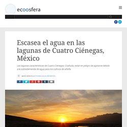 Escasea el agua en las lagunas de Cuatro Ciénegas, México