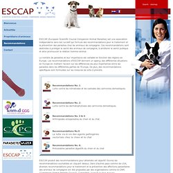 ESCAP - Recommandations