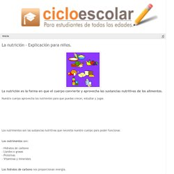 Ciclo Escolar: La nutrición - Explicación para niños.