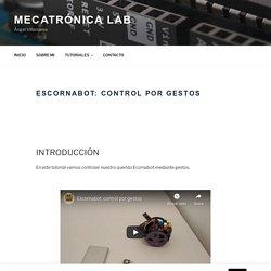 Escornabot: Control por gestos - Mecatrónica Lab