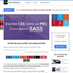 Escribe CSS como un PRO
