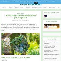 Cómo hacer esferas de suculentas para tu jardín