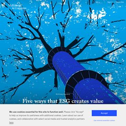 ESG (environmental, social, and governance) framework