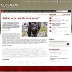 Guide de survie : que faire face à un ours?