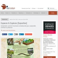 Espaces & Espèces [Exposition] - Thot Cursus