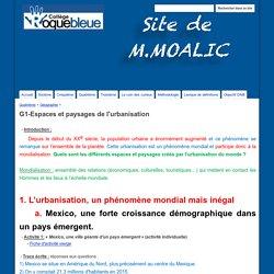 G1-Espaces et paysages de l'urbanisation - Site de M.Moalic