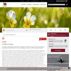 Flore en Espagne : Environnement et nature en Espagne