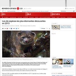 Les dix espèces les plus étonnantes découvertes en 2013