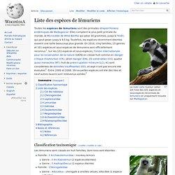 Liste des espèces de lémuriens