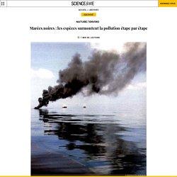 Marées noires : les espèces surmontent la pollution étape par ...
