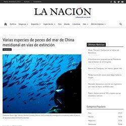 Varias especies de peces del mar de China meridional en vías de extinción