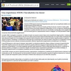 Una esperienza STEM: l'incubatrice in classe – La Fucina delle Scienze