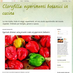 esperimenti botanici in cucina: Capsicum chinense: salsa piccante cruda con peperoncini habanero