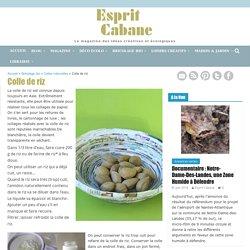 Colle de riz, Esprit Cabane, idees creatives et ecologiques