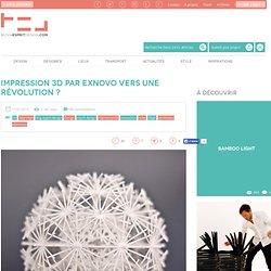 Impression 3D par Exnovo vers une révolution ?