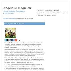 Les esprits de la nature – Angelo le magicien