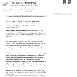 Essai d'un semoir sans labour - Le Blog du Cardinal