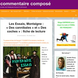"""Essais, Montaigne, """"Des cannibales"""" et """"Des coches"""" [Fiche BAC 2020]"""