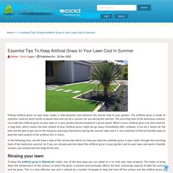 Essential Tips To Keep Artificial Grass In Your Lawn Cool In Summer