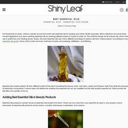 Best Essential Oils and Factors that Affect Them - Shiny Leaf