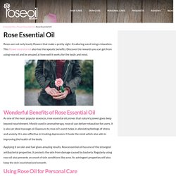 Rose Essential Oil Health Benefits for the Body and Mind – Rose Oil Review