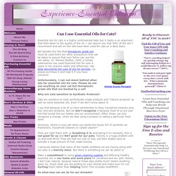 Essential Oils for Cats are a Great Home Remedy!