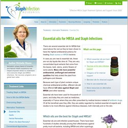 Essential Oils for MRSA & Staph: Which Oils are the Best?