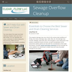 Essentials to Choose the Best Sewer and Drain Cleaning Services - Sewage Overflow Cleanup : powered by Doodlekit